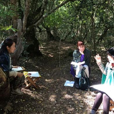 アフリカンツリーエッセンス 太古の森のミスト プラクティショナーコース