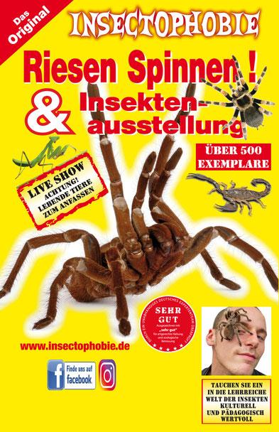 Insectophobie – Deutschlands größte mobile Spinnen- und Insektenausstellung