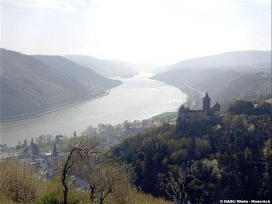 Blick auf das UNESCO Welterbetal Mittelrhein oberhalb von Bacharach Steeg