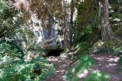 Höhleneingang Waipu Caves
