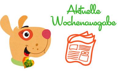 Lebenskunst in der Lebensmitte. Online  Magazin. Kerstin Frei. Bello & Bella.