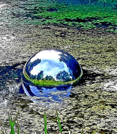 Bild mit kreativen Naturspiegelungen