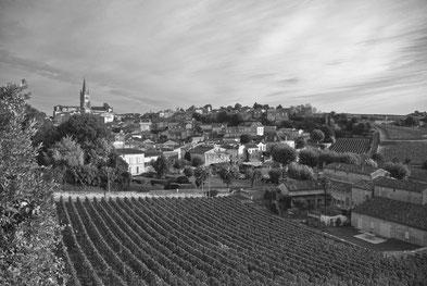 Grands Crus Saint Emilion Vin Inspiration Fanfaron