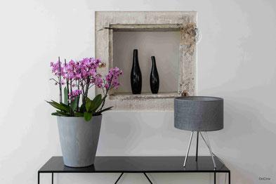 orchidée arrosage connecté avec OriCine® hygrométrie