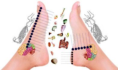 Réflexologie tibétaine, réflexologie plantaire, thérapie neuro-réflexe des pieds