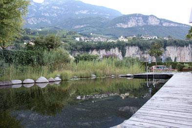 Naturbadeteich auf dem Campingplatz Obstgarten