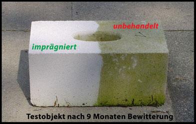 Nanoprotect-Steinimprägnierung schützt vor Einschmutzung und Moosbefall