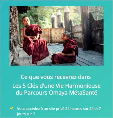 Olivier Mimy, Omaya MétaSanté - annuaire de therapeutes en region centre via energetica