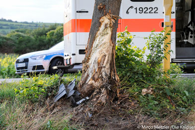 Das Auto nahm auch zwei Bäume mit in Leidenschaft.