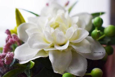 """<img src=""""weißeblüte.jpg"""" alt=""""weiße Blume"""">"""