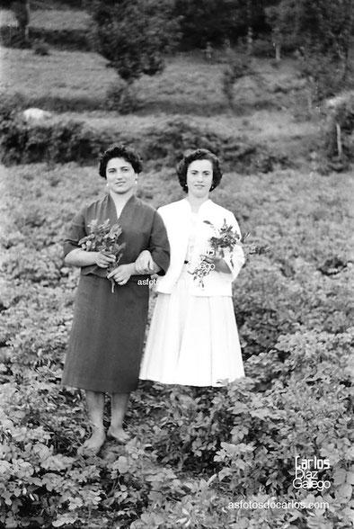 1958-Seara-ramos-hojas-Carlos-Diaz-Gallego-asfotosdocarlos.com