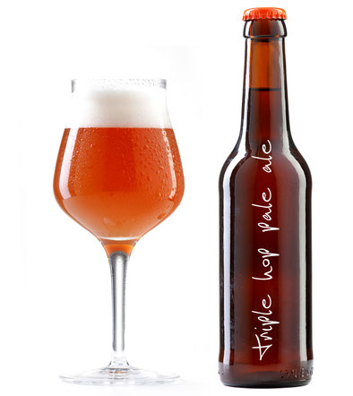 craft bier craft beer pale ale kravt bier signature bier
