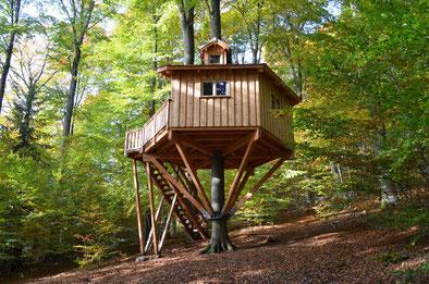 Baumhaus Kobel, Bild: Baumhaushotel Solling