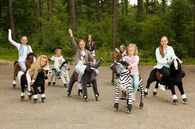 kinderfeestje kinderpartijtje intocht sinterklaas paard animal riding horseriding te huur nieuw vennep ziezo verhuur