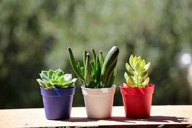色とりどりの角切りフルーツがきれいに盛り付けられたタルトタタン。フォークが添えられている。