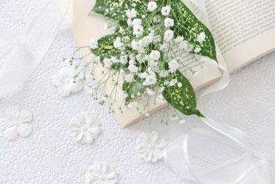 太陽の光を浴びるスズランの白い花。
