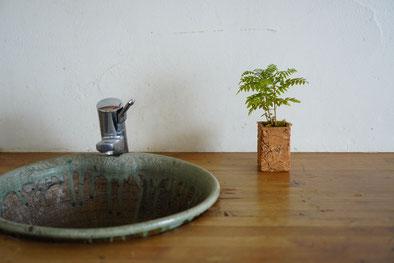 陶芸家 ブログ 焼き物 陶芸作品 茨城県笠間市 鉢植え 陶器 土味 ジャカランタ 鉢カバー 植木