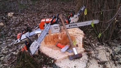 Baumfällung Problembaumfällung