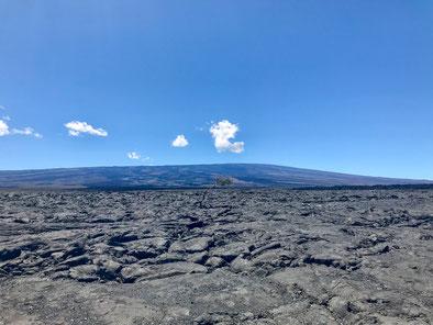 Blick auf den Mauna Loa