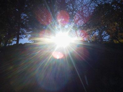 光の曼荼羅 光のエネルギー✨