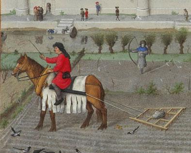 Mares mit einem Kummet,  Les Très Riches Heures du Duc de Berry (Detail Oktober)