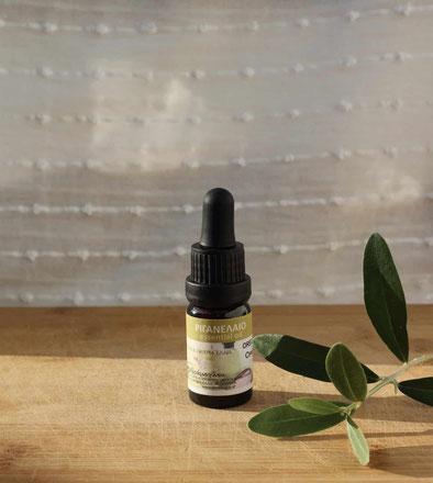 Griechisches Ätherisches Oreganoöl (Abramoglou) auf einem Holzbrett mit Olivenzweig