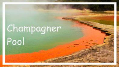 reisziele-neuseeland-champagner-pool