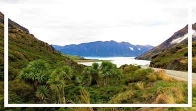 weltforscher-reisetipps-neuseeland