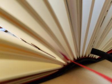 Einblick in das Wanderbuch für meine TypoWalz