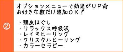 ☆ Twinkle Heart ☆ オプションメニュー