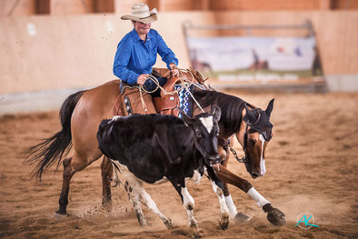 Wildwest Impression von der Schnyder Ranch Natural Horse Trail Meisterschaft 2017