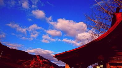 冬空 神社 南天