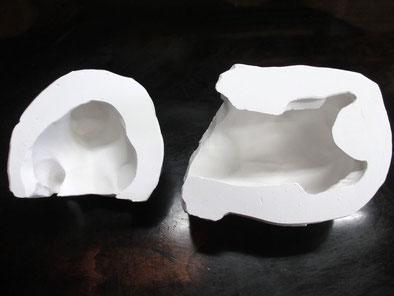 牛の石膏型