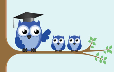 Three owls sitting on a tree branch being tutored to be engaged, inspired, creative individuals.