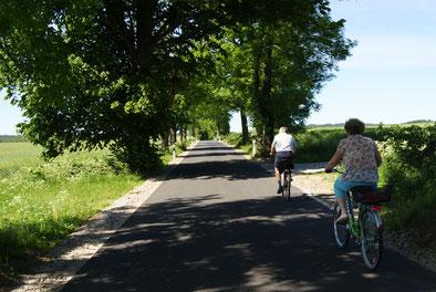 Radfahren auf der Insel Rügen