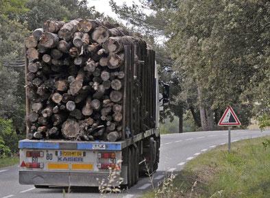 175 camions de 30 tonnes par jour rien que pour alimenter Gardanne