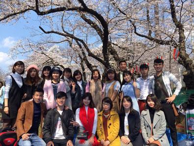 <上野公園にてお花見、初めての桜>