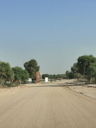 Auf diesem Weg geht es mit dem Auto ca. 6 km durch die Wüste