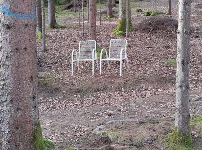 Pandemie Stühle im Wald draußenunterwegs
