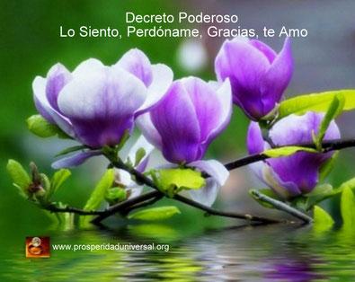 DECRETO PODEROSO LO SIENTO, PERDÓNAME, GRACIAS, TE AMO - PROSPERIDAD UNIVERSAL- www.prosperidaduniversal.org