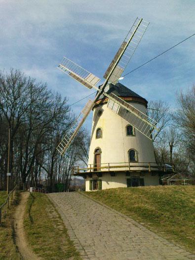 Quelle: http://www.dr-thomas-hartung.de/wp-content/uploads/2011/03/M%C3%BChle.jpg