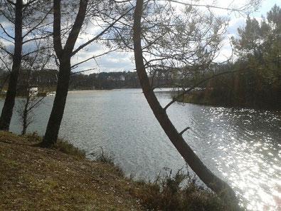 Lac de Gurson, Aeylis, gîte, Dordogne, baignade, Périgord, plage