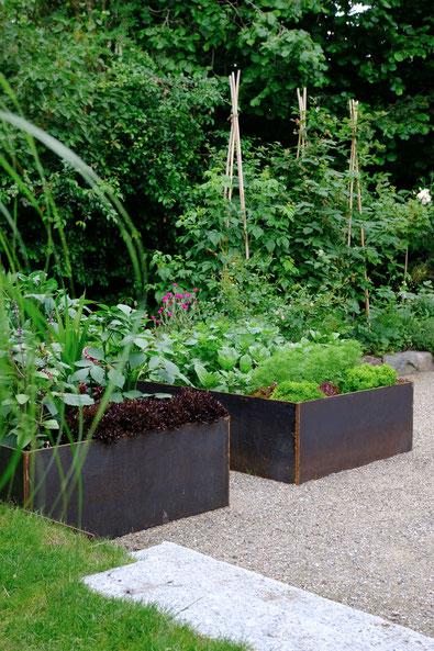 dieartigeGARTEN //June Garden - new high beds / neue Kniehochbeete mit Salat, Zinnien, Dahlien & Co, Im Hintergrund Himbeeren, Taybeere