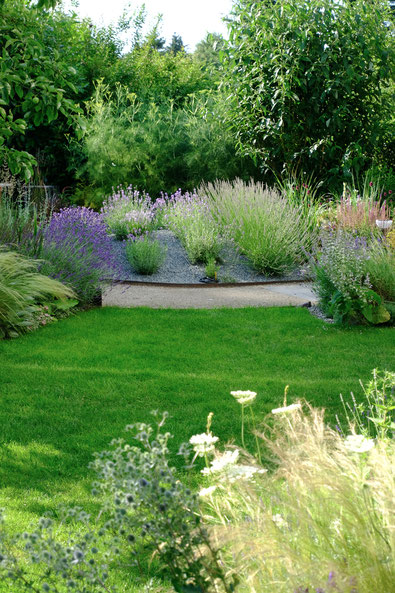 dieartigeGARTEN // Lavender Hill in the back + garden fennel