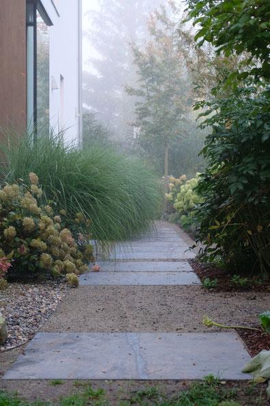 dieartigeGARTEN // Nebel im Herbstgarten - Norden, Weg + Chinaschilf + Hortensien