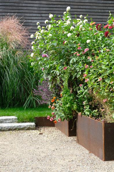 dieartigeGARTEN // August Garden - high beds with dahlias+zinnia / Hochbeete mit Dahlien+Zinnien