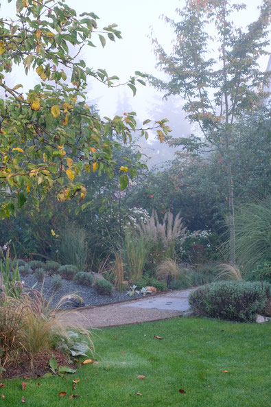 dieartigeGARTEN // Nebel im Herbstgarten - Weg m. Blausteinplatten + Lavendelhügel+ Felsenbirne + Gräser + Apfel