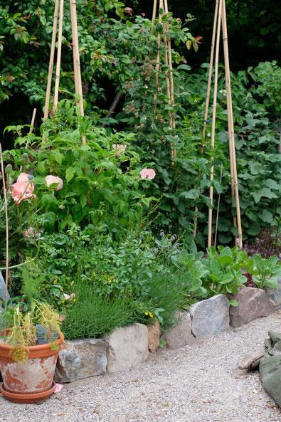 dieartigeGARTEN // Japanischer Bauerngarten - Himbeere, Taybeere + Türkischer Mohn