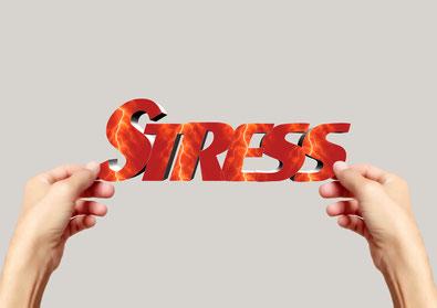 Cortisol steigt bei Stress