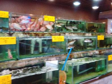 ベナンの海鮮レストランの水槽